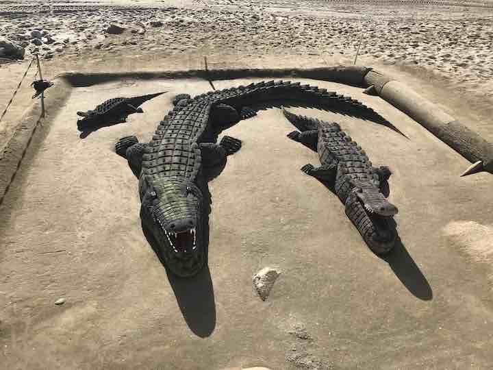 Krokodile aus Sand Marbella