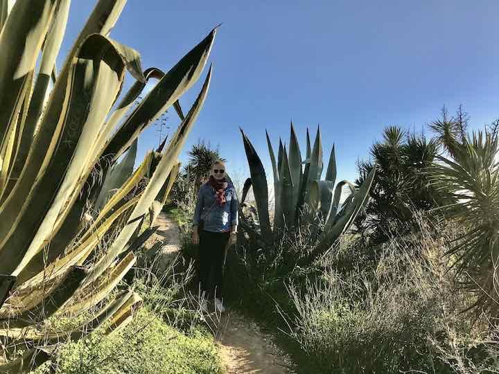 Laura zwischen Riesenpflanzen