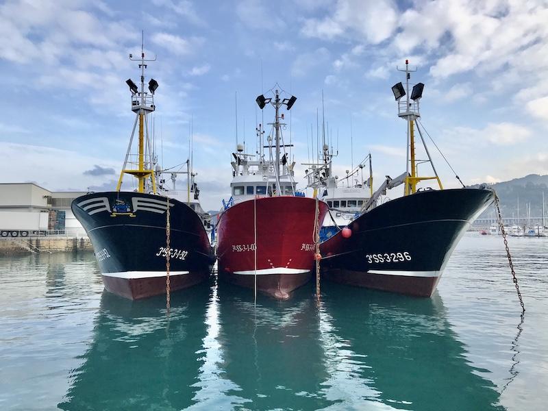 Fischerboote Hafen Getaria