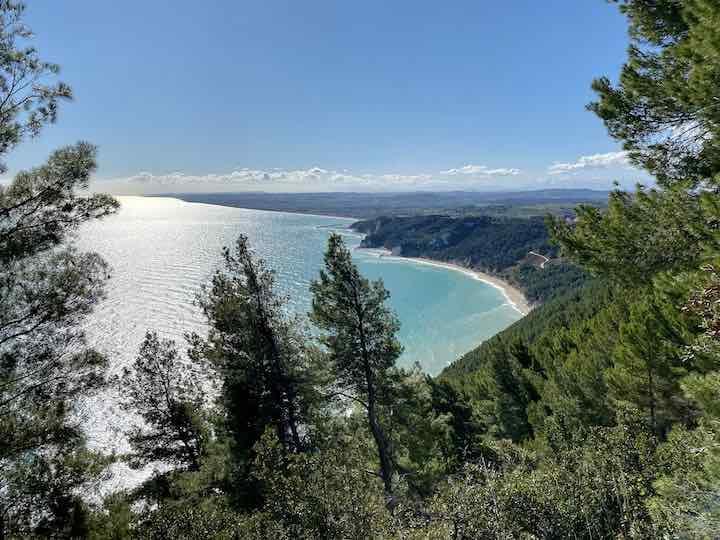 Ausblick Küste Wald