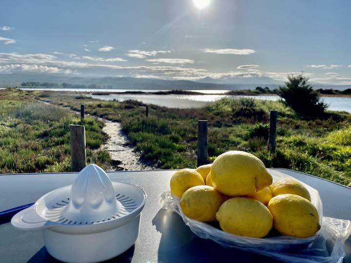 Zitronenlimonade Vorbereitungen