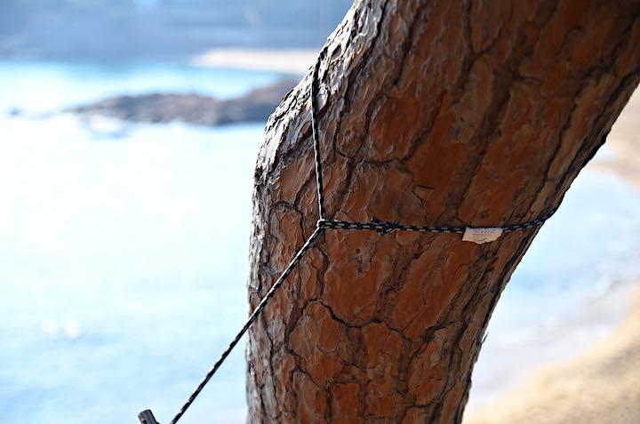 Micro Rope um Baum gelegt